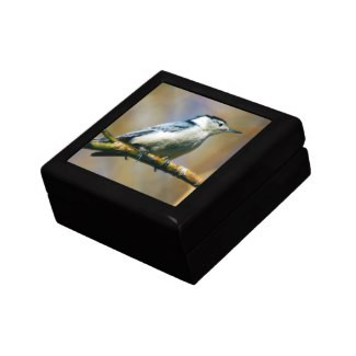 White-Breasted Nuthatch Keepsake Gift Box