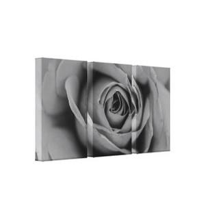 Monochromatic Rose Canvas Print