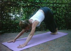 yogattitude
