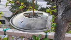 Bee Dishes to Help Keep Bees Off of the Feeders