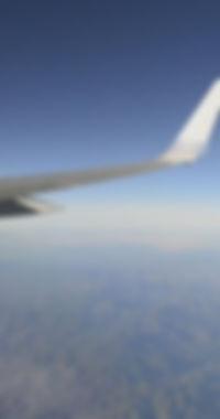 planewing1.jpg