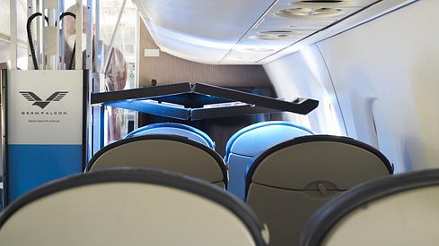 GermFalcon on Airplane