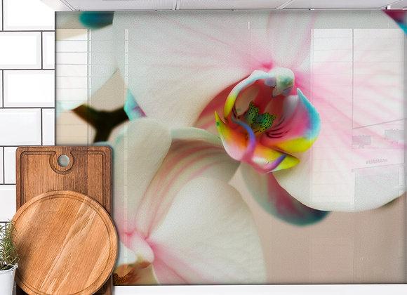 Rainbow Orchid DIY Splashback