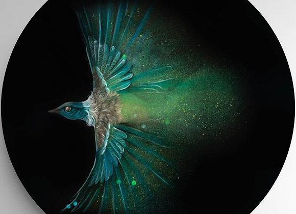 Flying Tui Glass Art