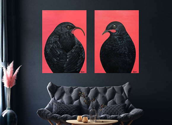 A1 Huia pair Print - Poster Size