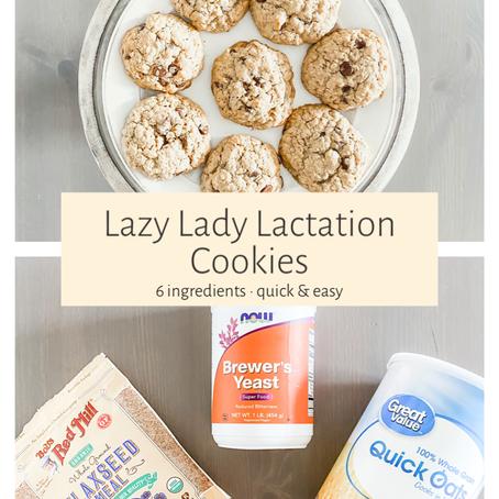Lazy Lady Lactation Cookies