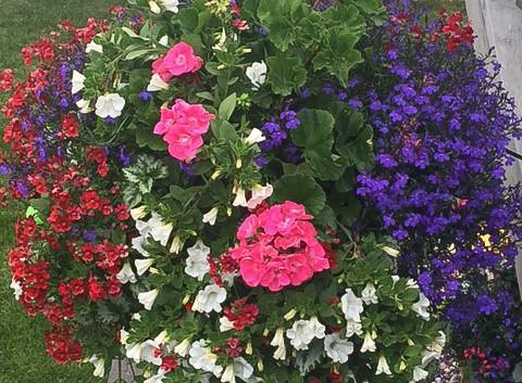 Custom Plantings 2017-149.jpg