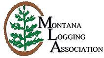 MLA website logo color.jpg