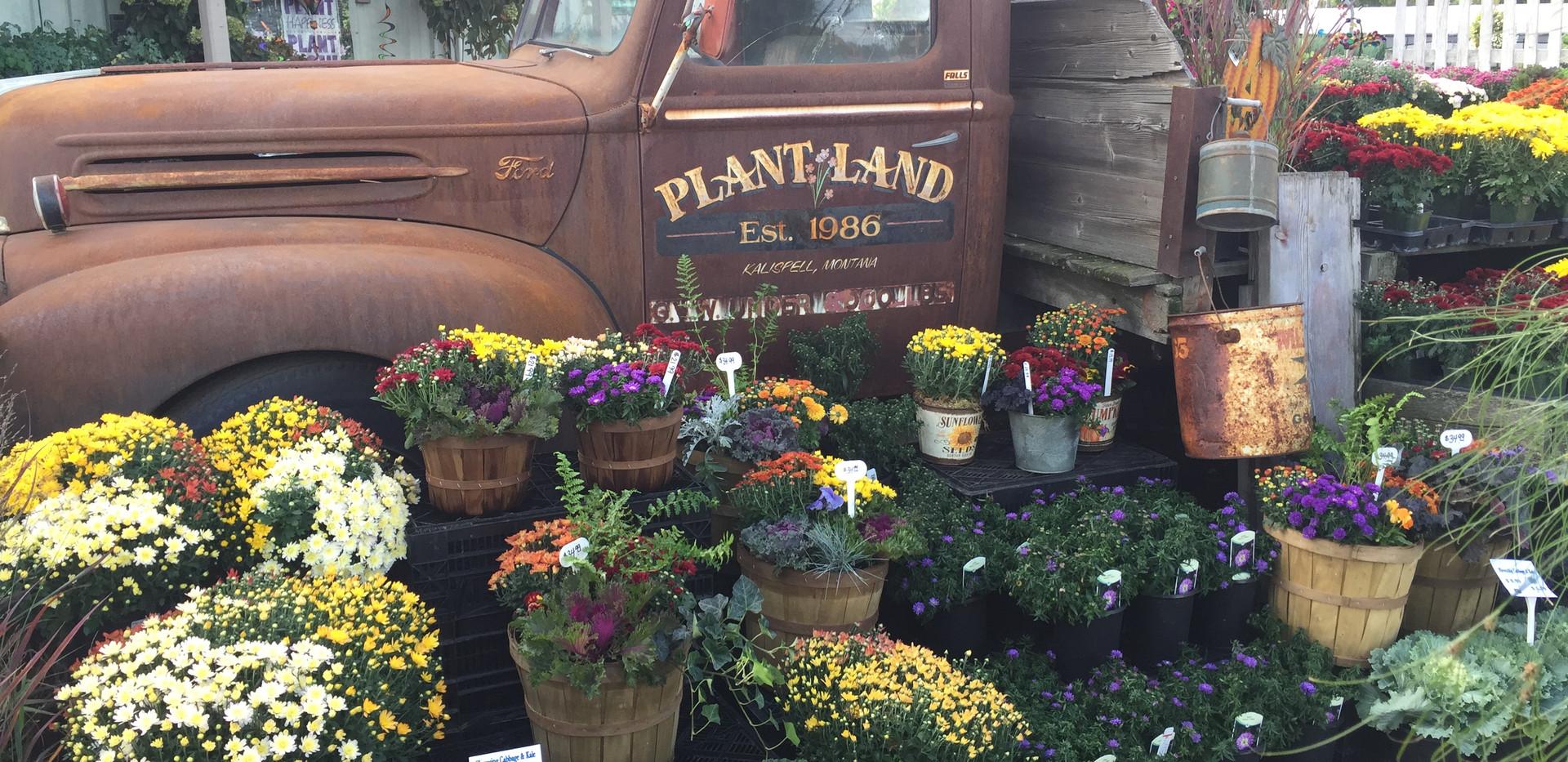 Plant Land Kalispell
