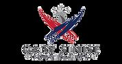 GSF_Logo_thumbnail_edited.png