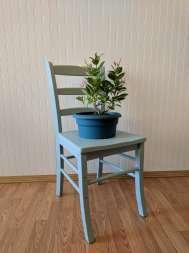 pot holder chair | light Blue