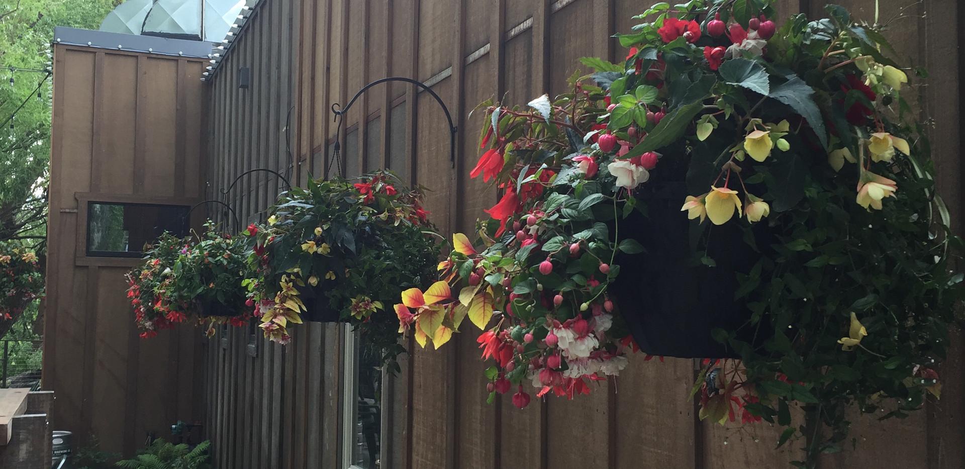 Custom Plantings 2017-33.jpg