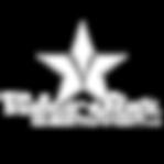 vse logo (1)_edited.png