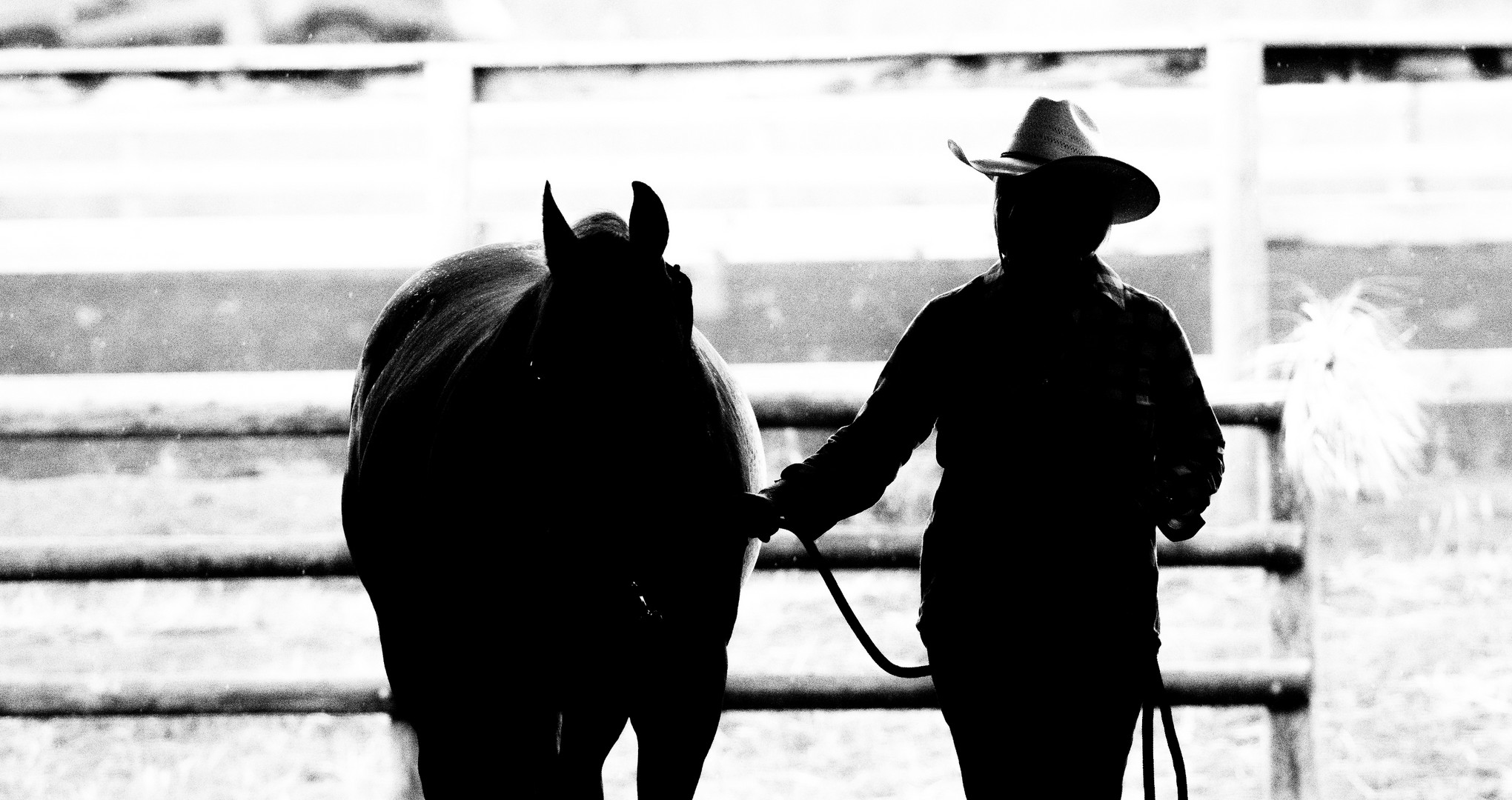 Valor Equine Therapy Services