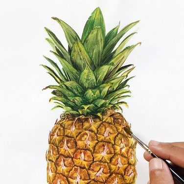 painting a pineapple in watercolour.jpg