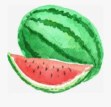 watermelon watercolour 2.jpg
