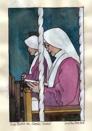 Roze Zusters van Klooster Cenakel