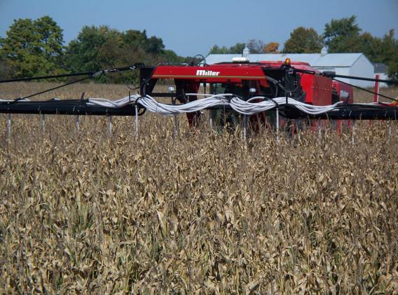 Seding Cover Crop into Standing Corn.jpg