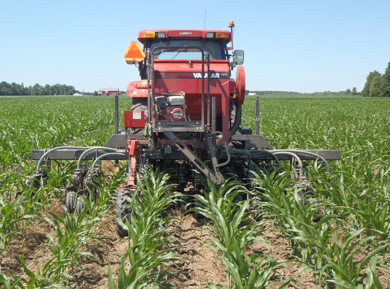 Interseeding Cover Crop, Incorporating F