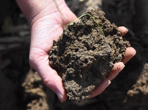 Quality Soil from White River bottom fie