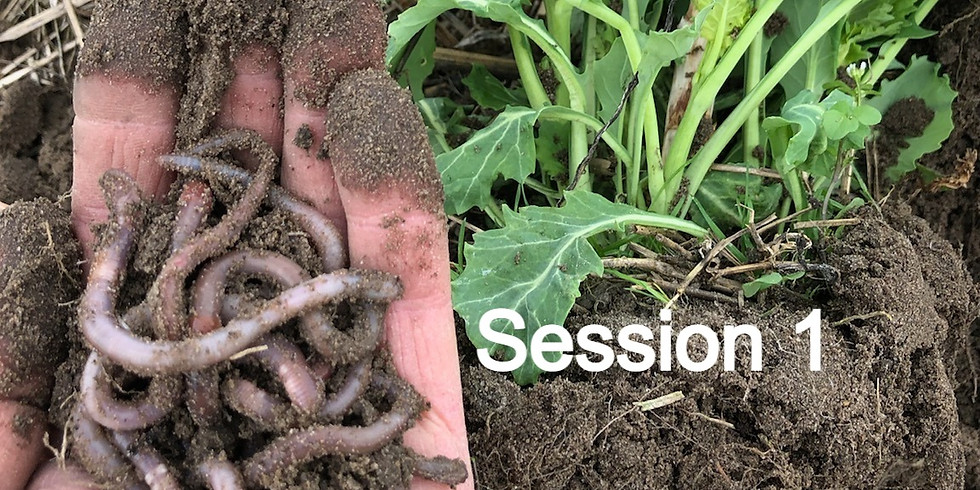 CCSI-SARE Core Cover Crops & Core Soil Health Virtual Training Series  - Session 1
