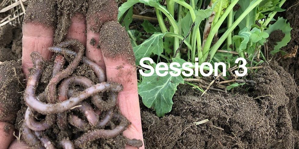 CCSI-SARE Core Cover Crops & Core Soil Health Virtual Training Series - Session 3