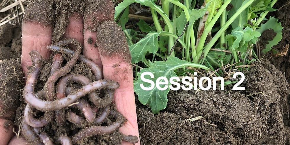 CCSI-SARE Core Cover Crops & Core Soil Health Virtual Training Series - Session 2