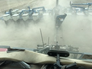 Planting in conventional field.jpg