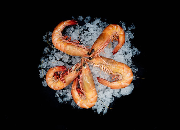 SA King Prawns Whole Cooked FROZEN