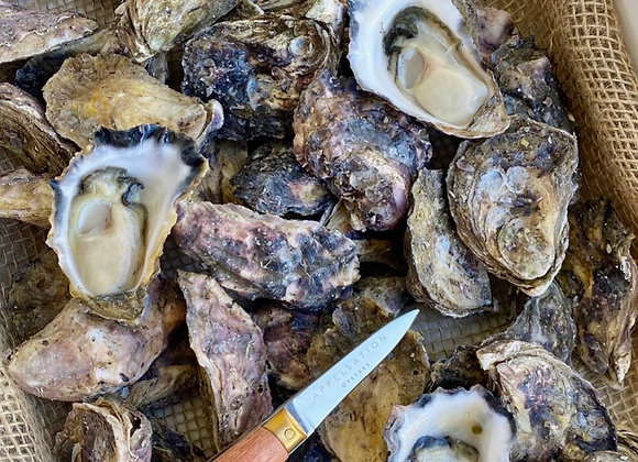 Live Oyster Shucking Experience