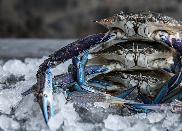 Australian Blue Swimmer Crabs Whole Raw FRESH