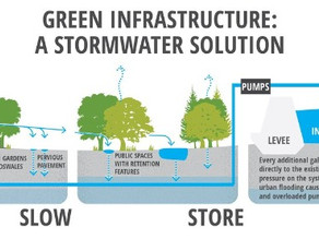 THE BENEFITS OF COMMUNITY-DRIVEN GREEN INFRASTRUCTURE