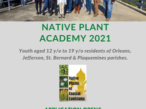 Native Plant Academy is back