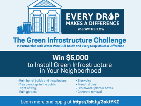 Green Infrastructure Challenge