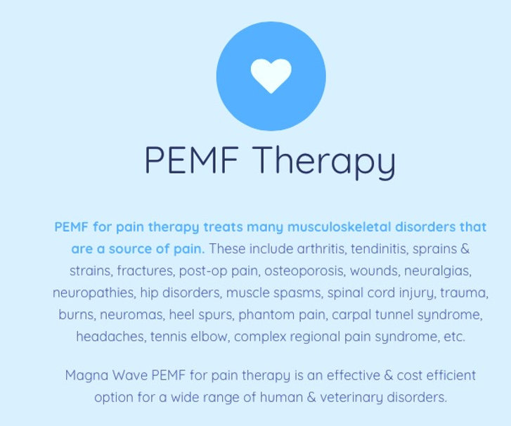 PEMF%20Therapy%20explanation_edited.jpg