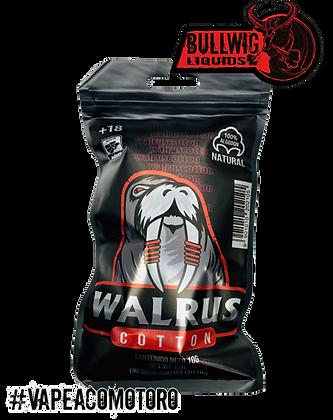 Walrus Cotton
