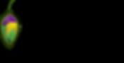 pupa4.png
