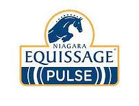 Equissage Pulse.jpeg