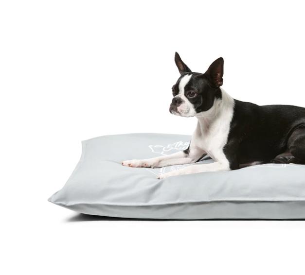 Snooza Organic Pet Futon