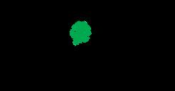 MOVI Logo.png