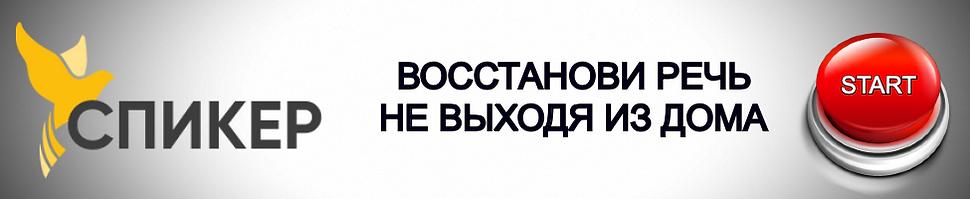 баннер СПИКЕР-3.png