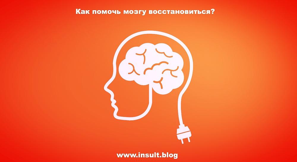 Инсульт Блог. Как помочь мозгу восстановиться?