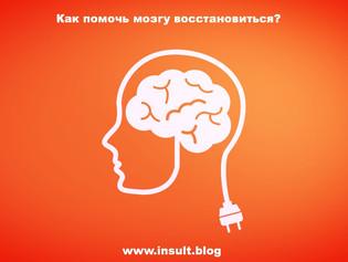 Как помочь мозгу восстановиться?
