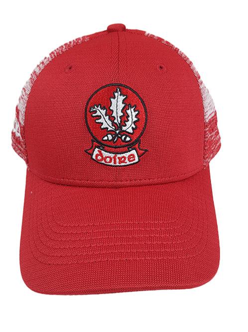 Derry GAA cap