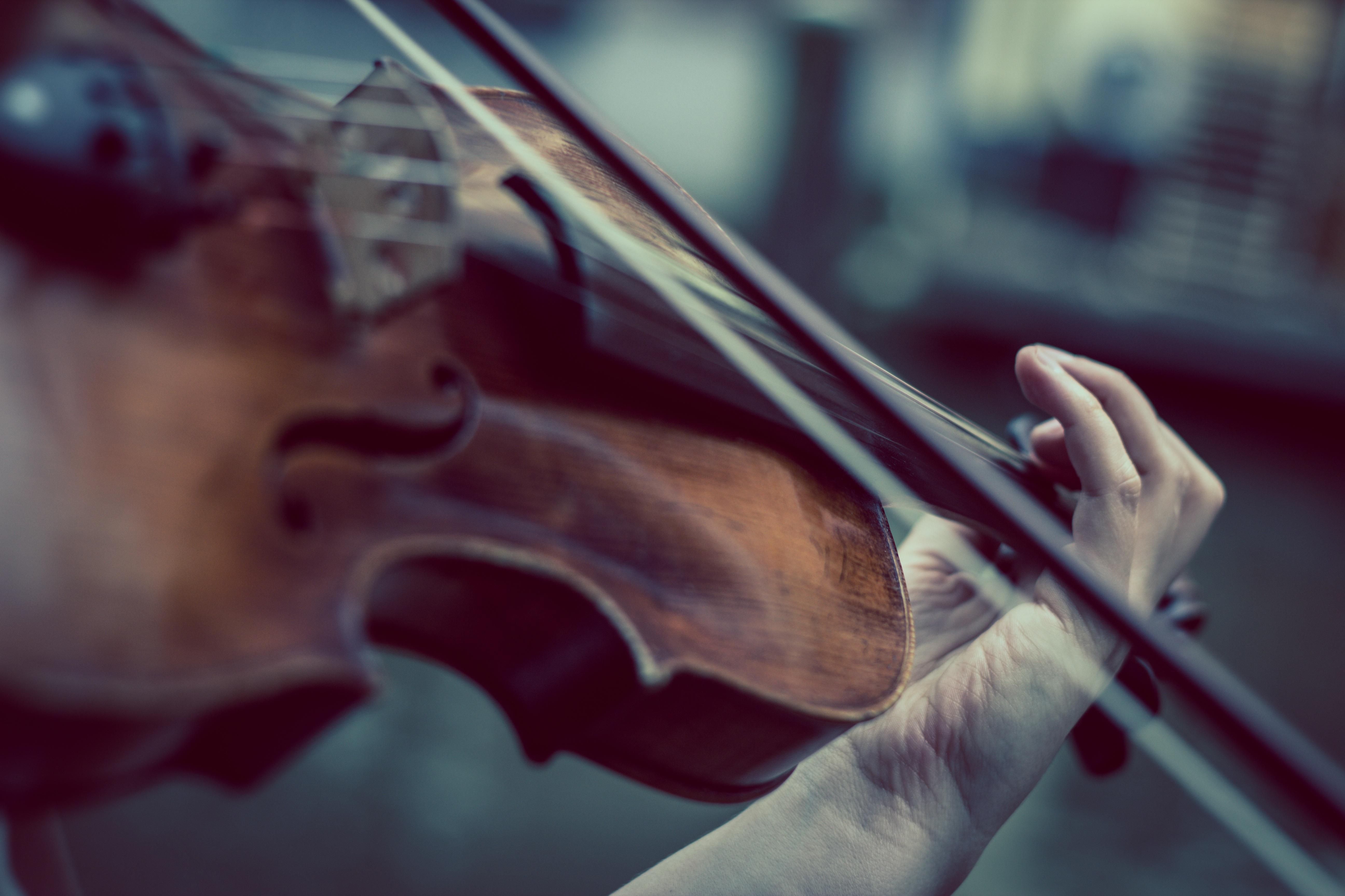 violin-374096