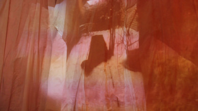 Aubrey-Ingmar-Manson_MFA Show Video Inst