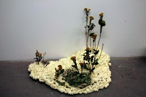 Aubrey-Ingmar-Manson_Meanders-and-Blooms