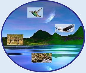 roue médecine, archétypes
