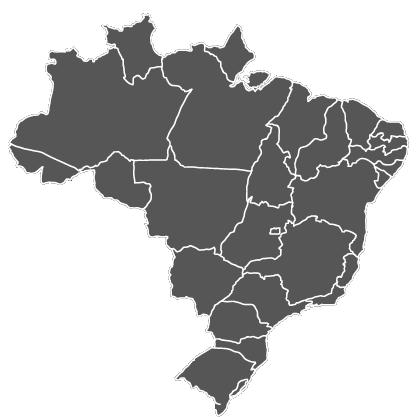 MAP BRASIL CINZA-01.png