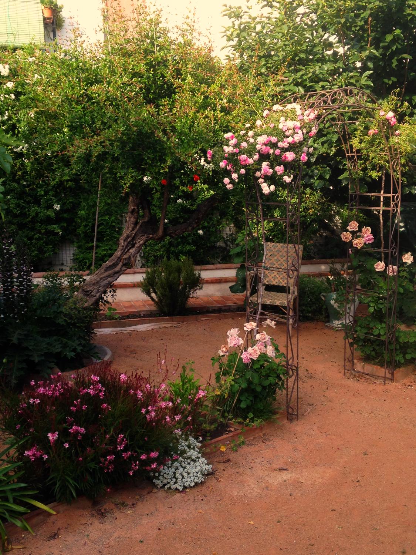 jardin_edited